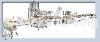 直线式12管自动充填旋盖系统